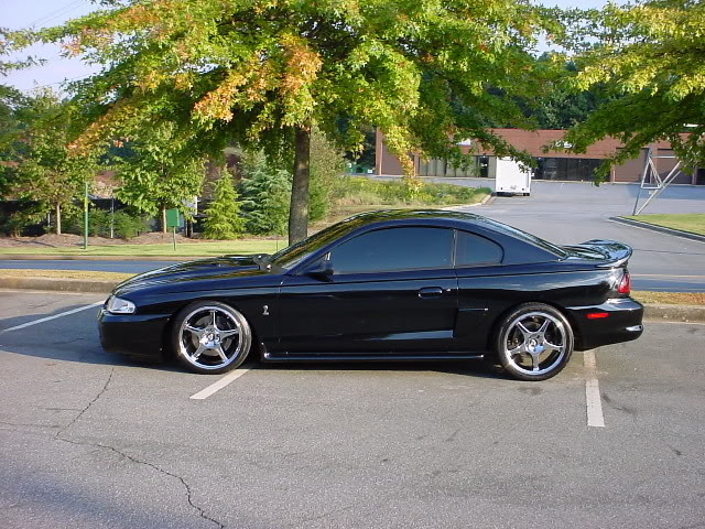 Svtperformance com To Ever Cleanest Tribute Sn95