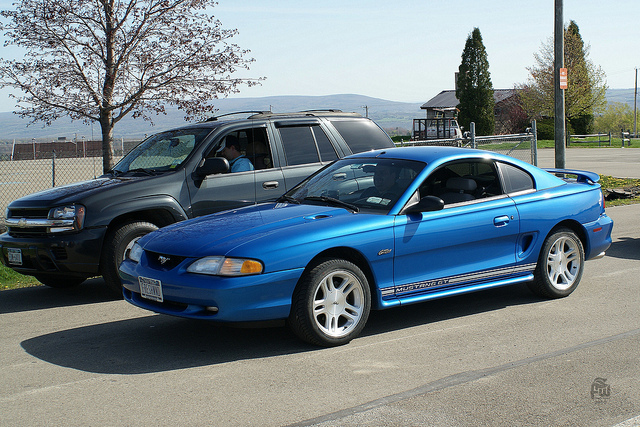 Of Mustangs Modern Best The Which Svtperformance com Is Looking