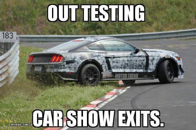 2016.4.12-Mustang-Memes-Wrecks-2.jpg