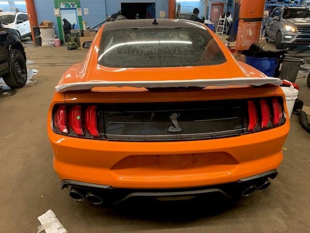 2020 GT500 rear arrival.jpg