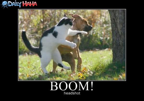 boom_headshot-1.jpg