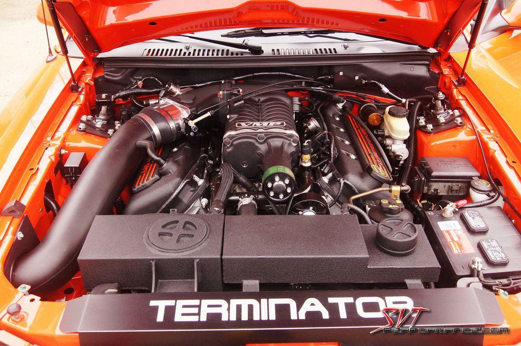 Buy_Terminator_003.jpg