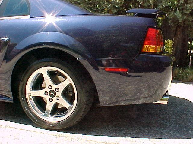 CobraExhaust(Maggie)-side.jpg