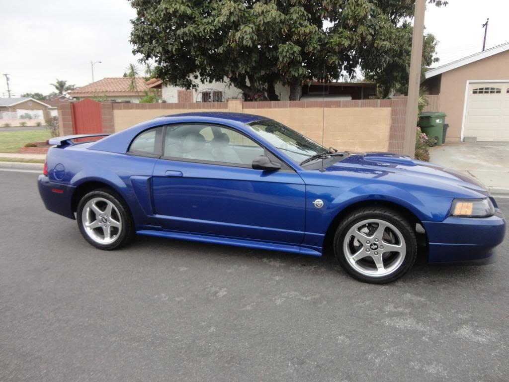 Fs 2004 mustang gt sonic blue clean svtperformance com