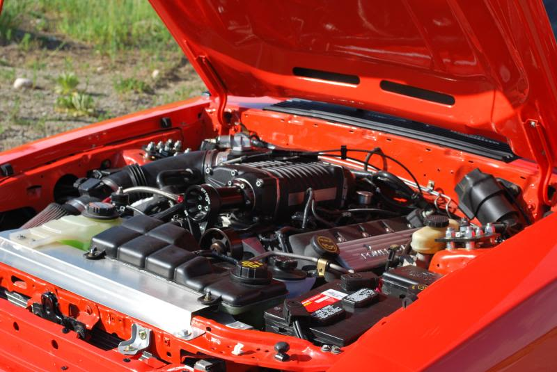 Terminator Cobra Engine For Sale