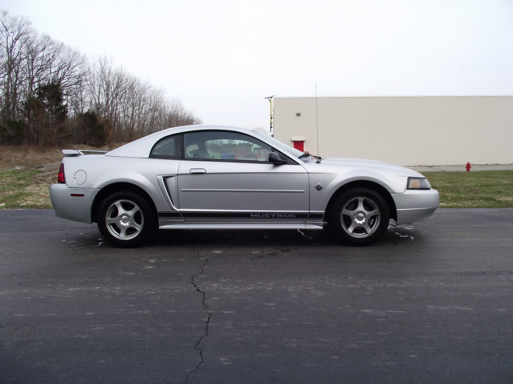 2004 40th anniversary ford mustang svtperformance com