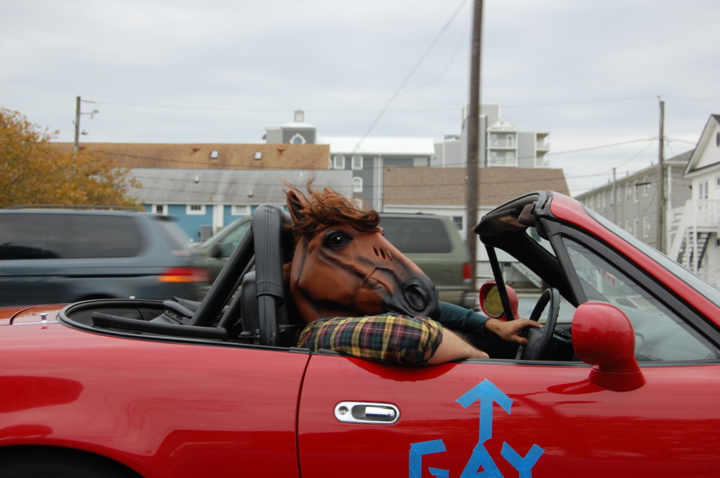 horsehead_zpsdf30d3f6.jpg