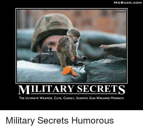 mobuck-com-military-secrets-the-ultimate-weapon-cute-cuddly-sadistic-gun-6952518.jpeg