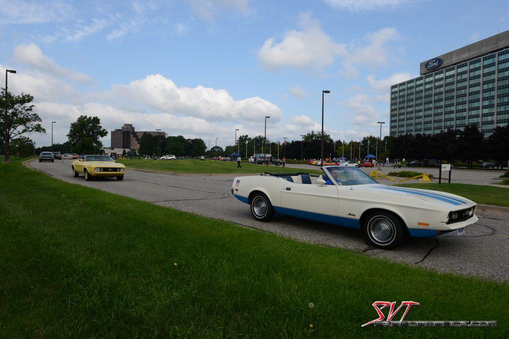 Mustang_10000000_011.jpg