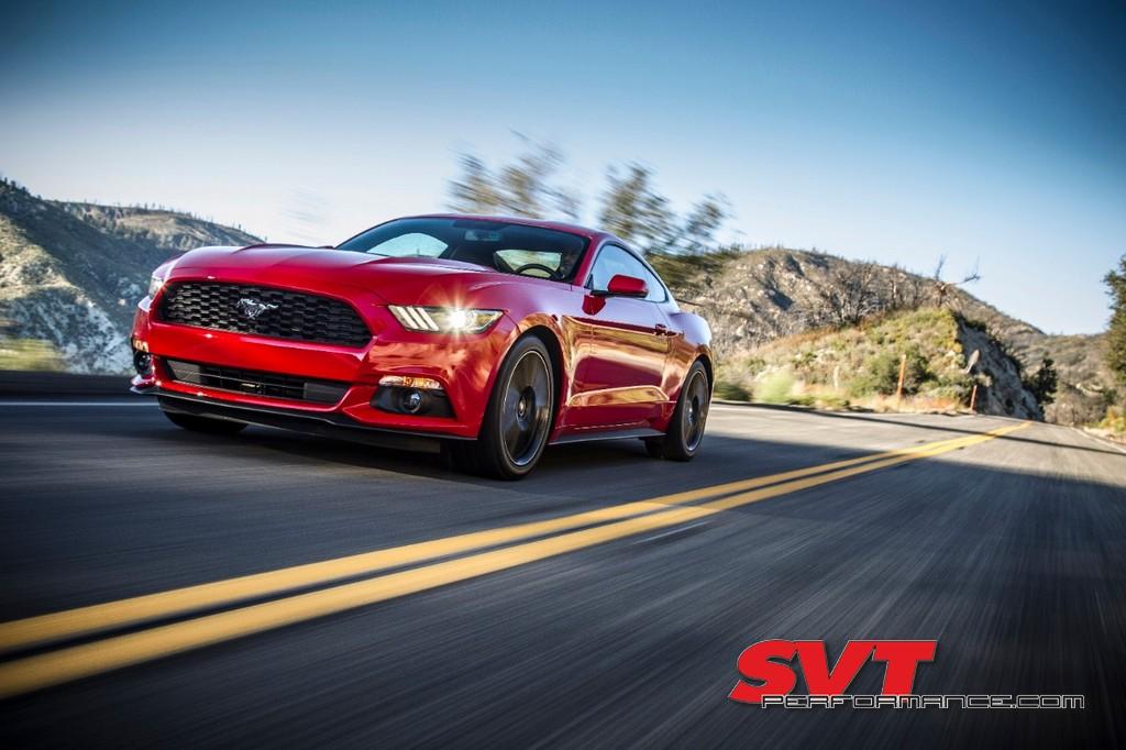 Mustang_Day_2020_010.jpg