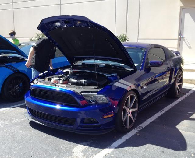 MustangsUnlimited-Bobby.jpg