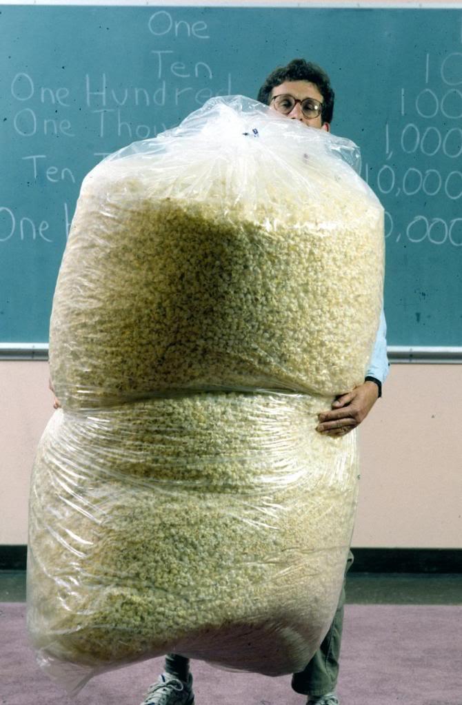PopcornHugeBags.jpg