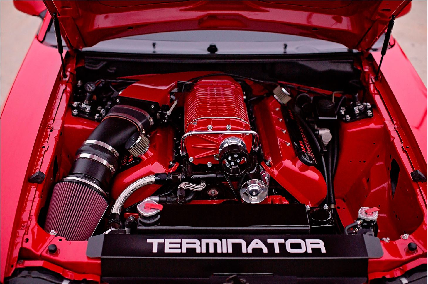 Terminators 6.jpg