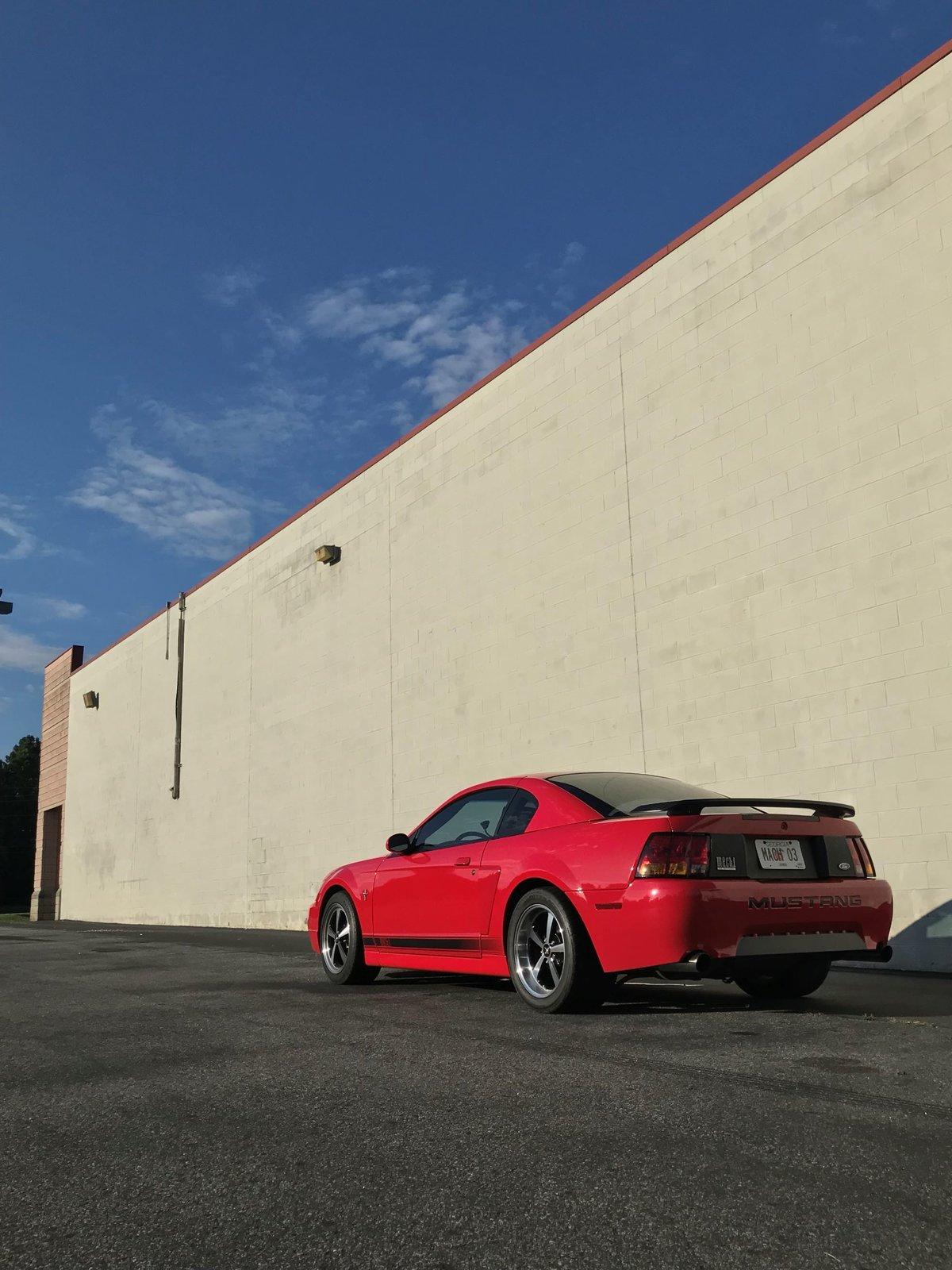 White wall back of car resized.jpg