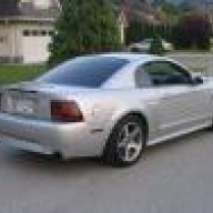 silver_stang