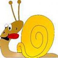 Oxford Snake