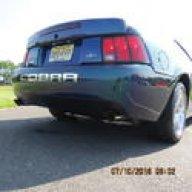 Mustangfan0211