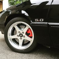 Mustang5L5