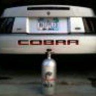 03Cobrra