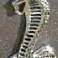 One Fast Cobra
